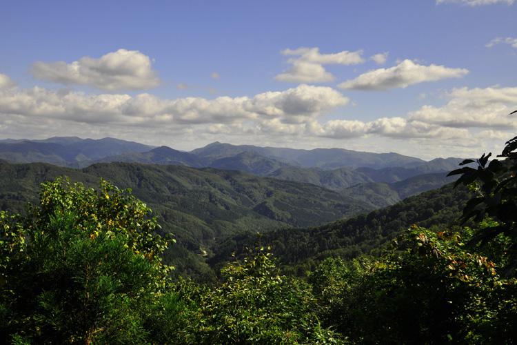 白神山地の画像 p1_21