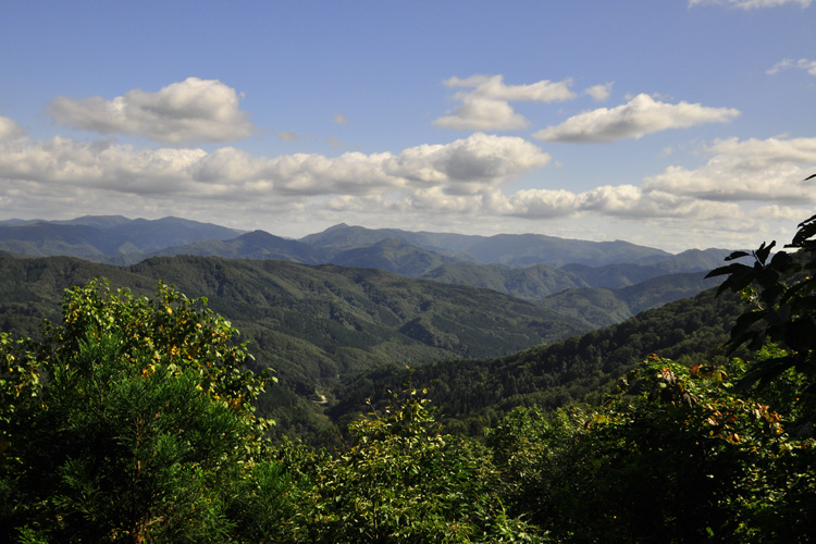 白神山地の画像 p1_28