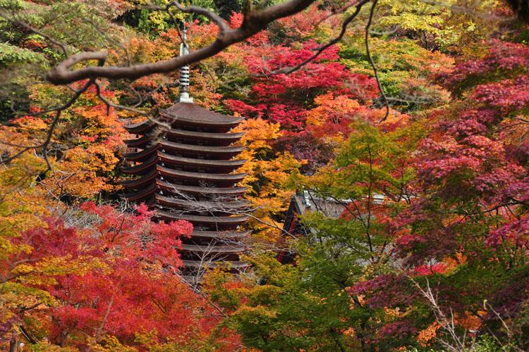 「談山神社」的圖片搜尋結果
